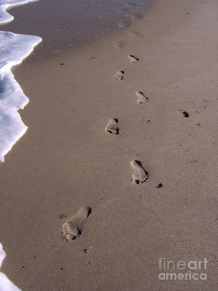Photograph - Foot Prints In The Sand by D Hackett