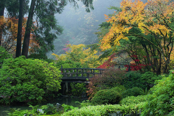Wall Art - Photograph - Footbridge In Japanese Garden by Panoramic Images