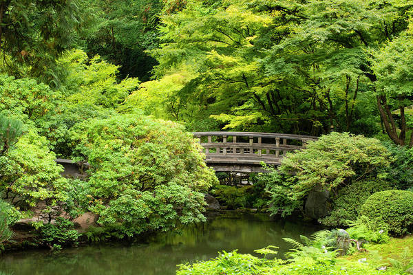 Wall Art - Photograph - Footbridge Over Pond In Japanese by Panoramic Images