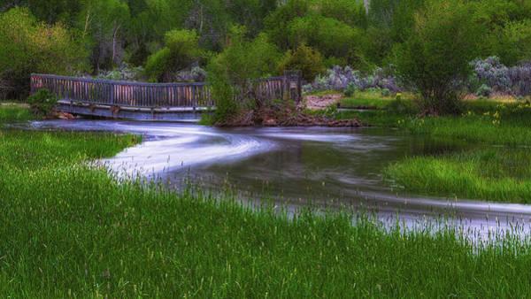 Photograph - Footbridge by Thomas Hall