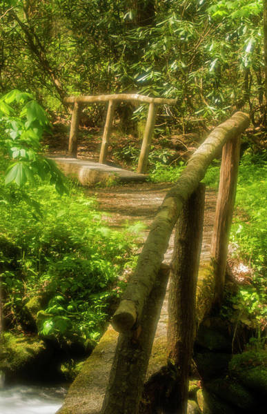Southern Usa Photograph - Footbridges, Cosby Nature Trail by Jerry Whaley