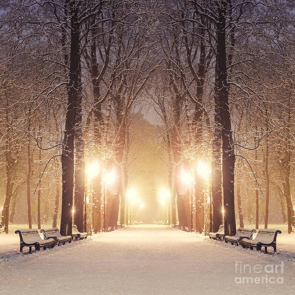 Freshness Wall Art - Photograph - Footpath In A Fabulous Winter City Park by Beerlogoff