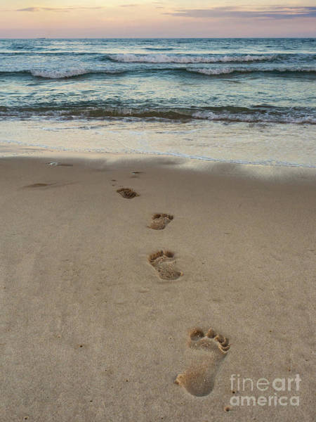 Photograph - Footprints At Sunset by Alissa Beth Photography