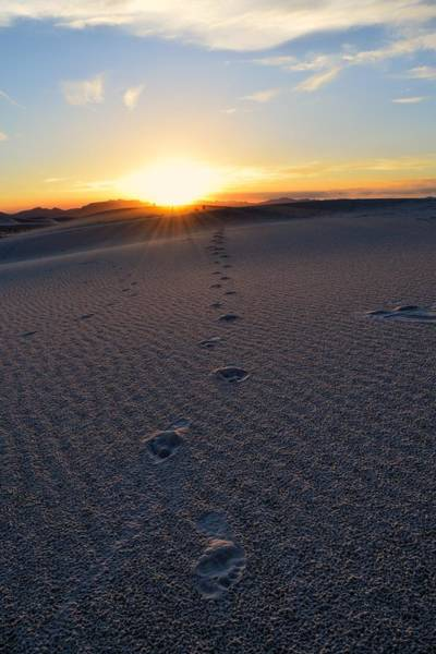 Photograph - Footprints At White Sands, New Mexico  by Chance Kafka