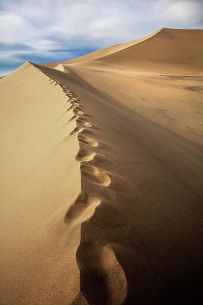 Great Sand Dunes National Park Photograph - Footprints On Sand Dunes by Tom Grubbe