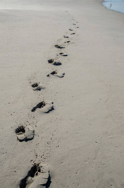 Photograph - Footsteps In The Sand by Bill Cannon