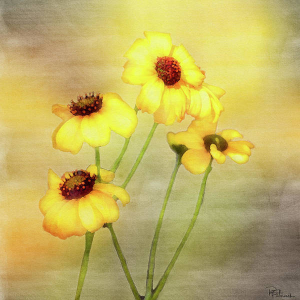 Painting - For Everything There Is A Season In Digital Watercolor by Rick Furmanek