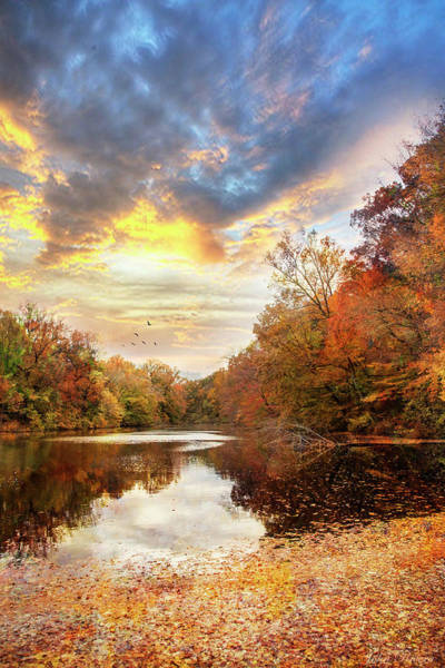 Photograph - For The Love Of Autumn by John Rivera