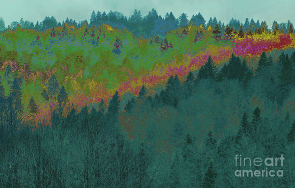 Digital Art - Forest And Valley by Corinne Carroll
