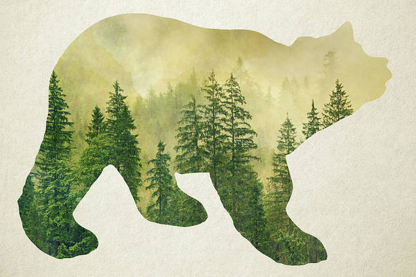 Exploring Mixed Media - Forest Black Bear Silhouette by Christina Rollo