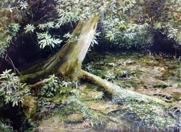 Painting - Forest Edge by William Brody