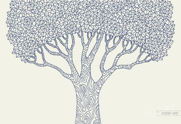 Forest Oak Tree Isolated. Vector Botany Art Print