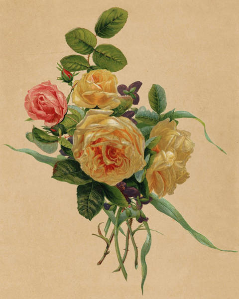 Tulip Bloom Painting - Forest Roses And Violins, 1865 by Gerardina Jacoba van de Sande Bakhuyzen