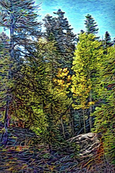 Digital Art - Forest Sunlight by Joel Bruce Wallach