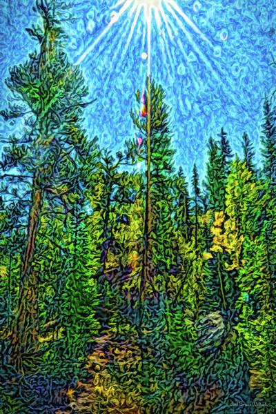 Digital Art - Forest Sunlit Grace by Joel Bruce Wallach