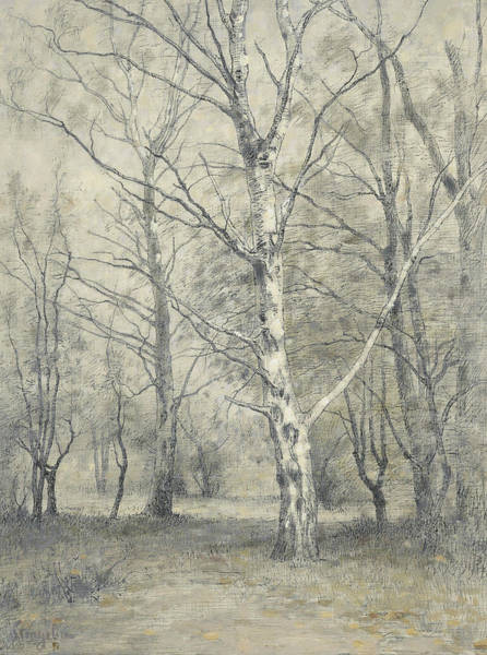 Wall Art - Painting - Forest With Birch Trees by Alphonse Stengelin