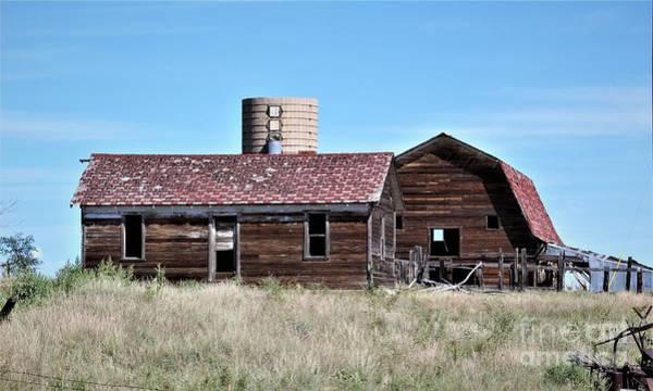 Photograph - Forgotten Farm II by Tammie J Jordan