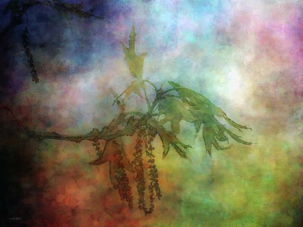 Photograph - Forgotten Lyric 0003 Idp_2 by Steven Ward