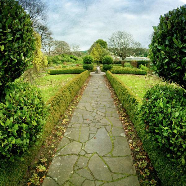 Vertical Garden Photograph - Formal Garden by Jill Ferry