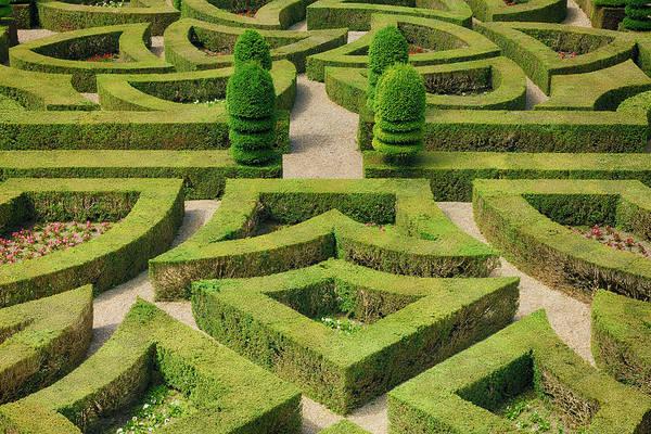 Villandry Photograph - Formal Hedged Garden Of Villandry by Martin Ruegner