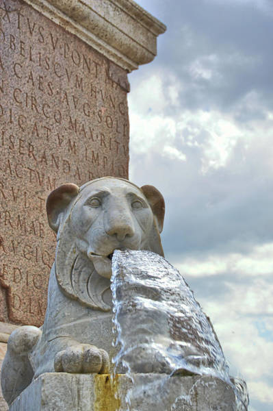Photograph - Fountain Lions by JAMART Photography