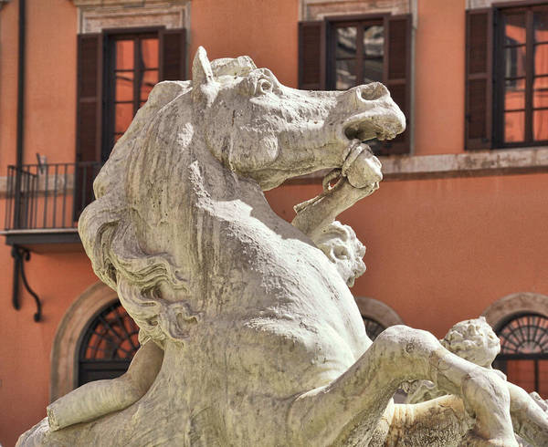 Photograph - Fountain Steed by JAMART Photography