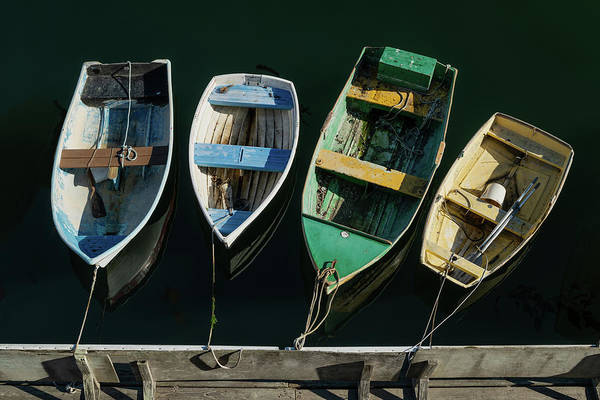 Monterey Bay Photograph - Four Dinghies by Steve Gadomski