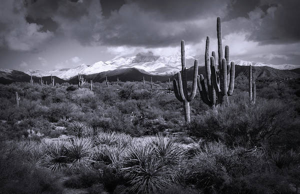 Wall Art - Photograph - Four Peaks On A Snow Day In Black And White  by Saija Lehtonen