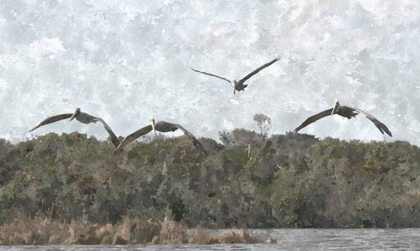 Pelican Island National Wildlife Refuge Wall Art - Photograph - Four Pelicans Flying Over Pea Island 4 by Cathy Lindsey