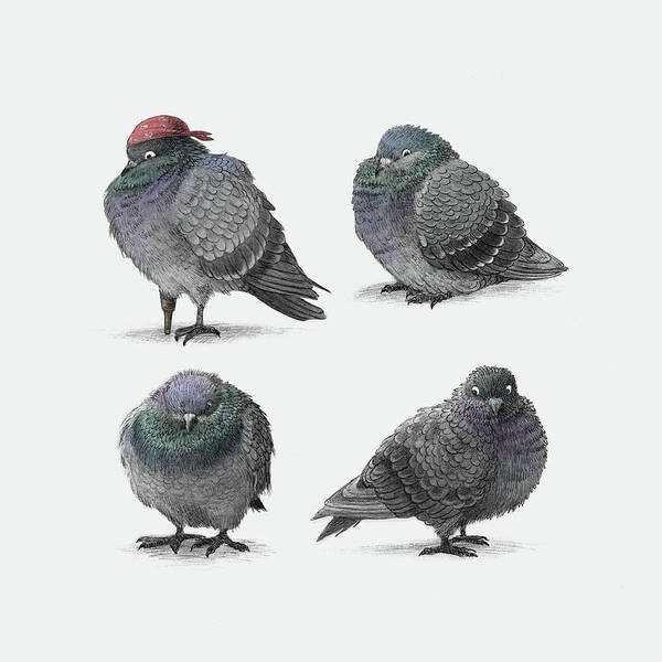 Flag Drawing - Four Pigeons by Eric Fan