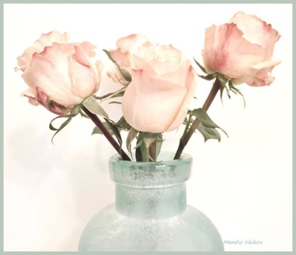 Wall Art - Photograph - Four Roses In A Frosted Vase by Marsha Heiken