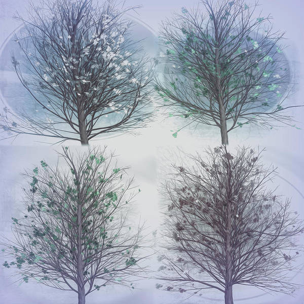 Carribean Islands Digital Art - Four Seasons Square Cool Gray Tones by Debra and Dave Vanderlaan