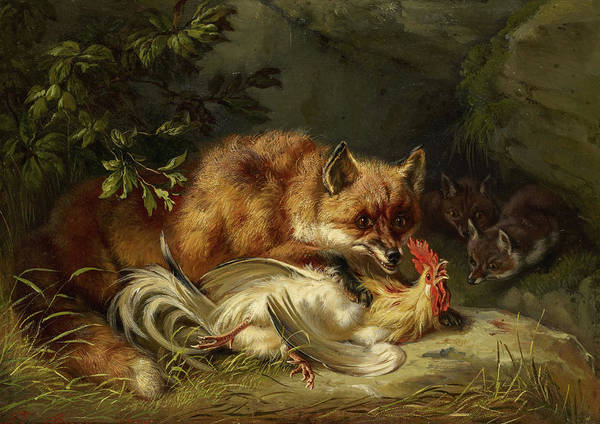 Wall Art - Painting - Fox Attacking A Cock by Benno Raffael Adam