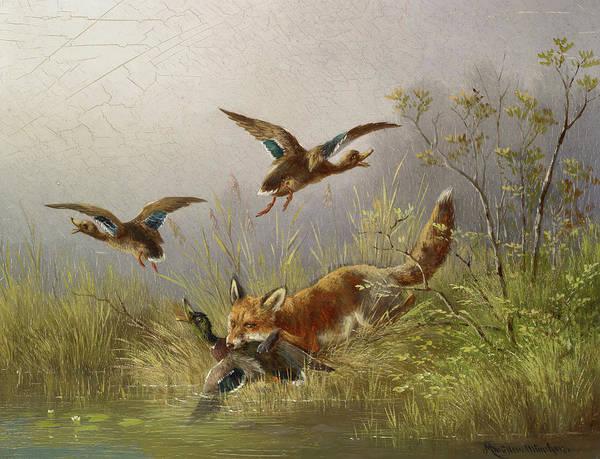Wall Art - Painting - Fox Chasing Ducks by Moritz Muller