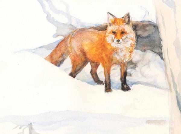 Painting - Fox by Nancy Watson