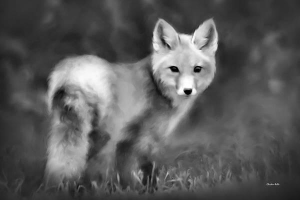Photograph - Fox Portrait Black And White by Christina Rollo