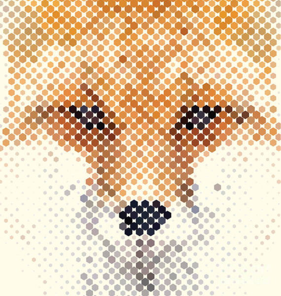 Clever Wall Art - Digital Art - Fox Portrait Made Of Geometrical Shapes by Vilmos Varga