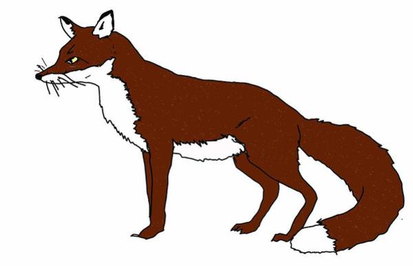Reynard Wall Art - Digital Art - Fox by Sarah Thompson-engels
