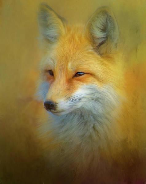 Fox Mixed Media - Foxy Mama by Steven Richardson