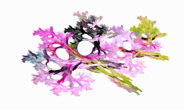 Digital Art - Fractal Bouquet Pink by Don Northup