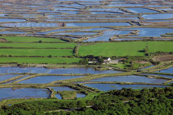 Salt Pond Photograph - France, 44, Guerande, Aerial Photo by Gérard Labriet
