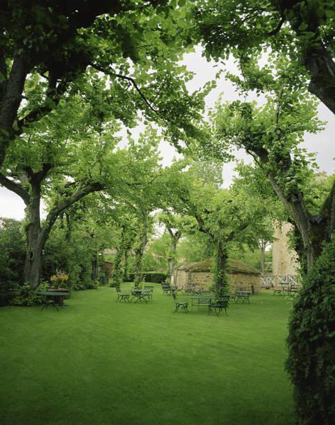 Castle Garden Photograph - France, Beaujolais Region, Chateau by Luca Trovato