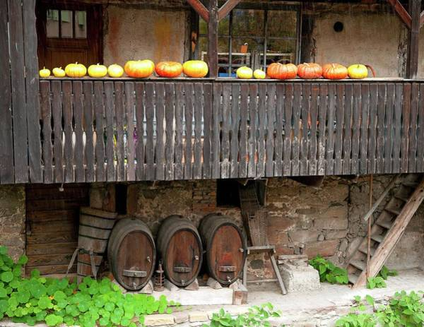 Winemaking Photograph - France, Haut-rhin 68, Kaysersberg by Gérard Labriet