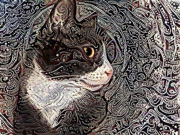 Digital Art - Franklyn The Tuxedo Cat by Peggy Collins
