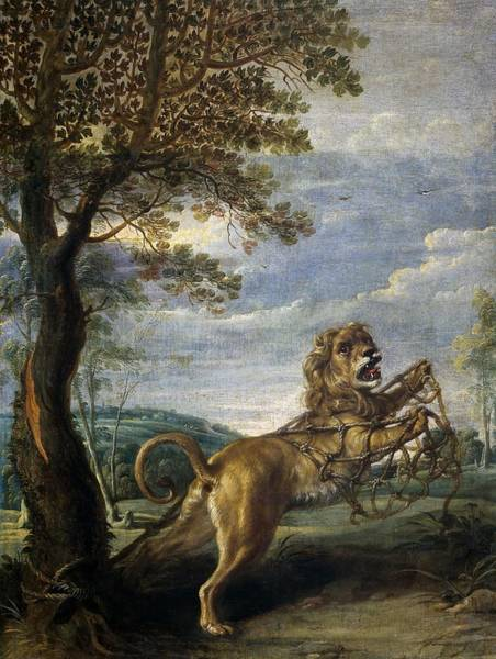 Entangled Painting - Frans Snyders / 'the Fable Of The Lion And The Mouse', First Half 17th Century, Flemish School. by Frans Snyders -1579-1657-