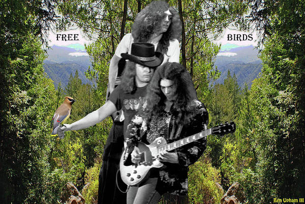 Photograph - Free Birds On Mt. Tamalpais by Ben Upham