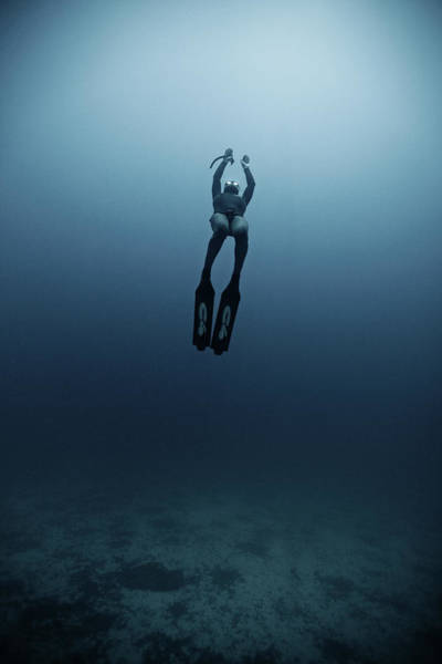 Underwater Photograph - Freediving by Underwater Graphics
