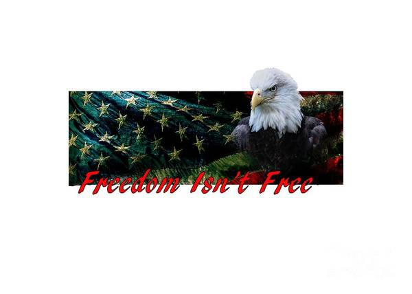 Mixed Media - Freedom Isn't Free by Ed Taylor