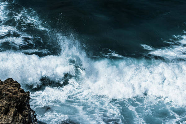 Photograph - Freedom Of The Ocean V by Anne Leven