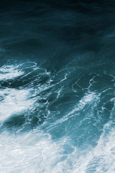 Photograph - Freedom Of The Ocean Vi by Anne Leven
